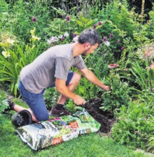 Natürlich gärtnern mit torffreien Erden für eine gesunde Ernte