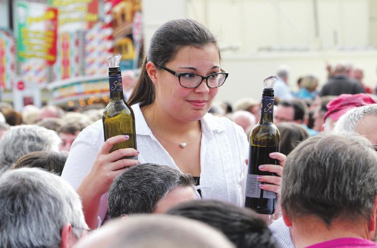 """Motto in diesem Jahr: """"Rheinhessen – klassische Vielfalt"""""""