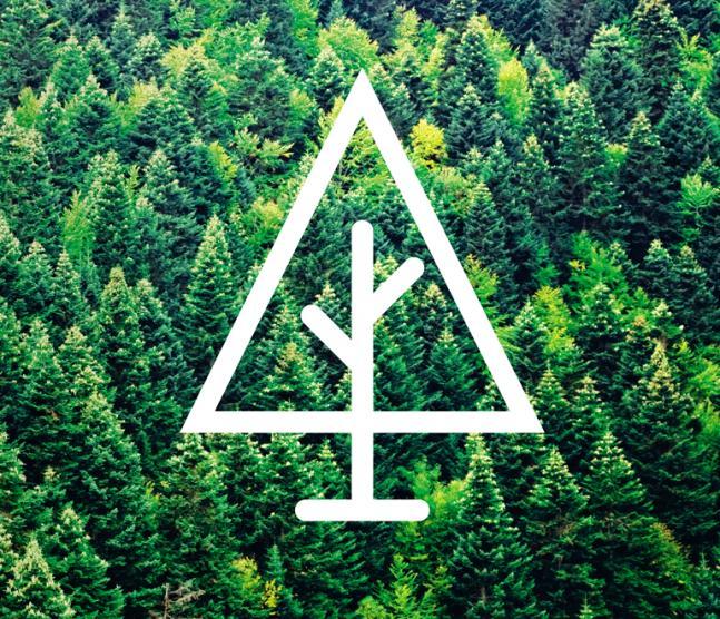 O zaletach drewna z recyklingu
