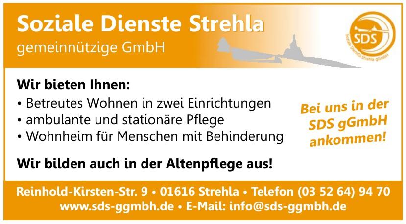 Soziale Dienste Strehla gemeinnützige GmbH