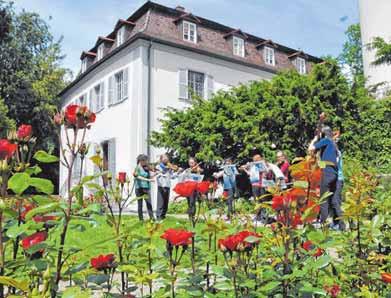 Im Rosengarten wird wieder musiziert.