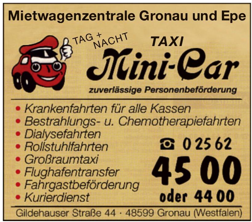 Taxi Mini-Car