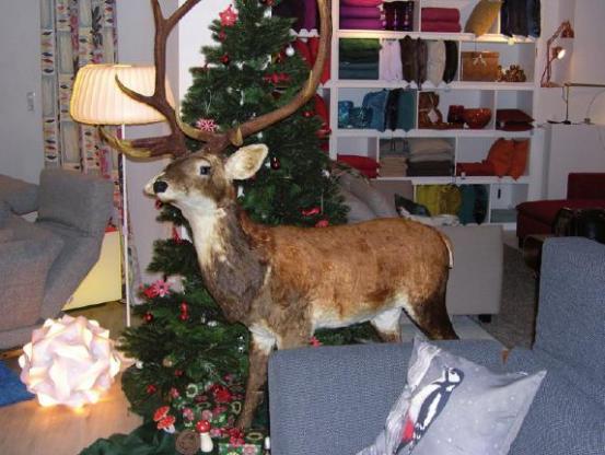 Winterliche Deko erwartet Kunden von Der Schaukelstuhl in Ottensen