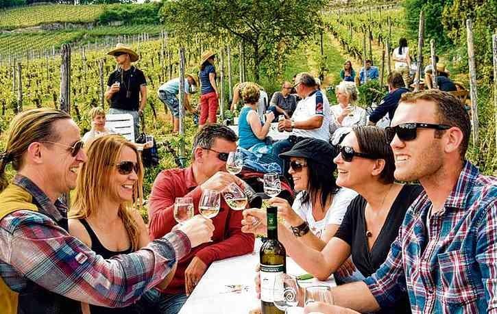 Zwischen Bad Kösen und Roßbach locken Winzer zum Weingenuss