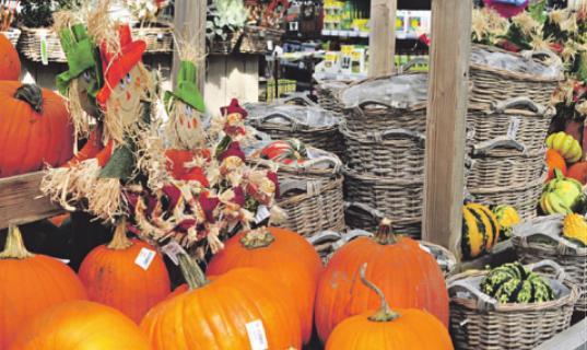 Herbstfest mit Weinprobe im Gartencenter Stassen