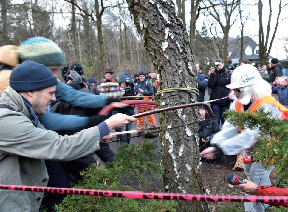 """Kettensägenmassaker"""" am Björnsonweg"""