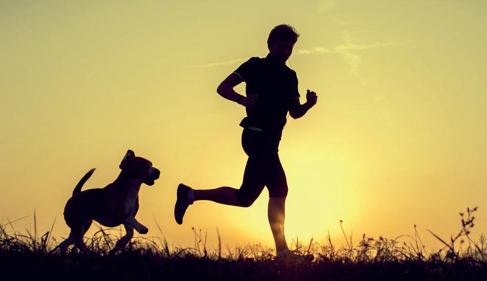 Gemeinsames Sporttreiben vertieft die Bindung zwischen Mensch und Tier.FOTO: XSOLOVIOVA LIUDMYLA_FOTOLIA.COM