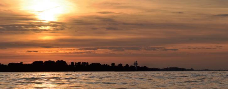 Elbinsel Neßsand im Abendlicht FOTO: KRÖGER