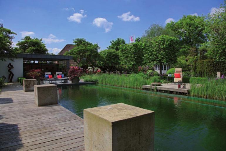 Ein eigener Naturpool lädt zum Wohlfühlen im heimischen Garten ein