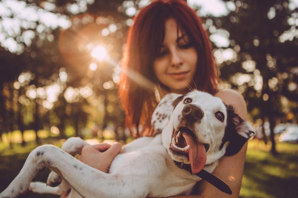 Mensch und Hund verbindet eine enge Freundschaft. Viele Besitzer sehen ihr Haustier als richtiges Familienmitglied an. FOTO: ASTAROT_FOTOLIA.COM