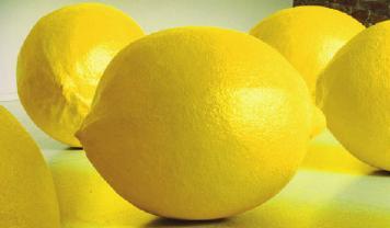 "Irene Hoppenberg, ""Zitronen"", 2001, Pappmaché, Farbe"