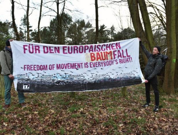 Manchmal wird auch dafür demonstriert, Bäume zu fällen. Hier am Björnsonweg zugunsten einer Asylunterkunft.