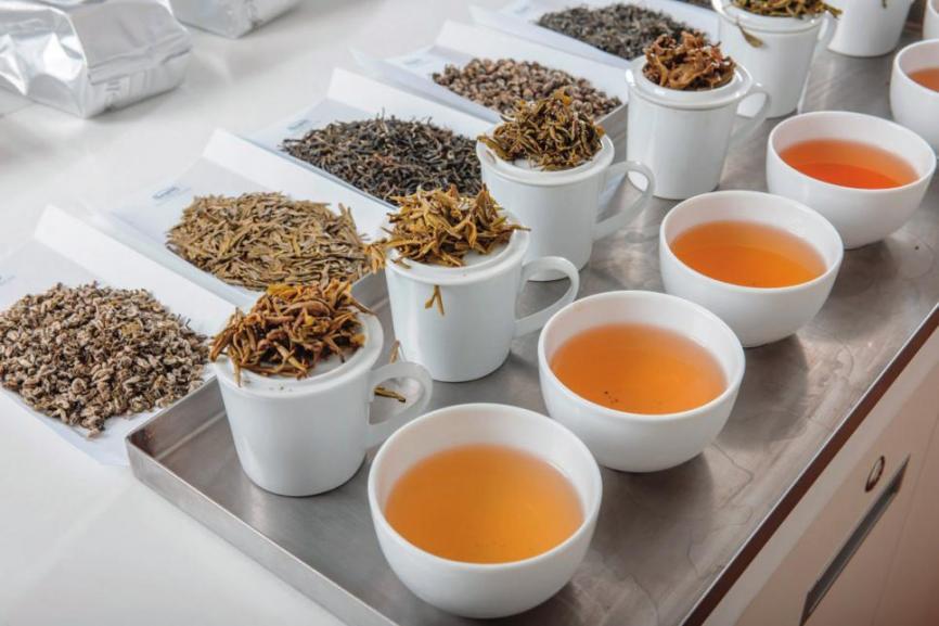 Es ist alles angerichtet für das Tea-Tasting. Fotos: Ronnefeldt